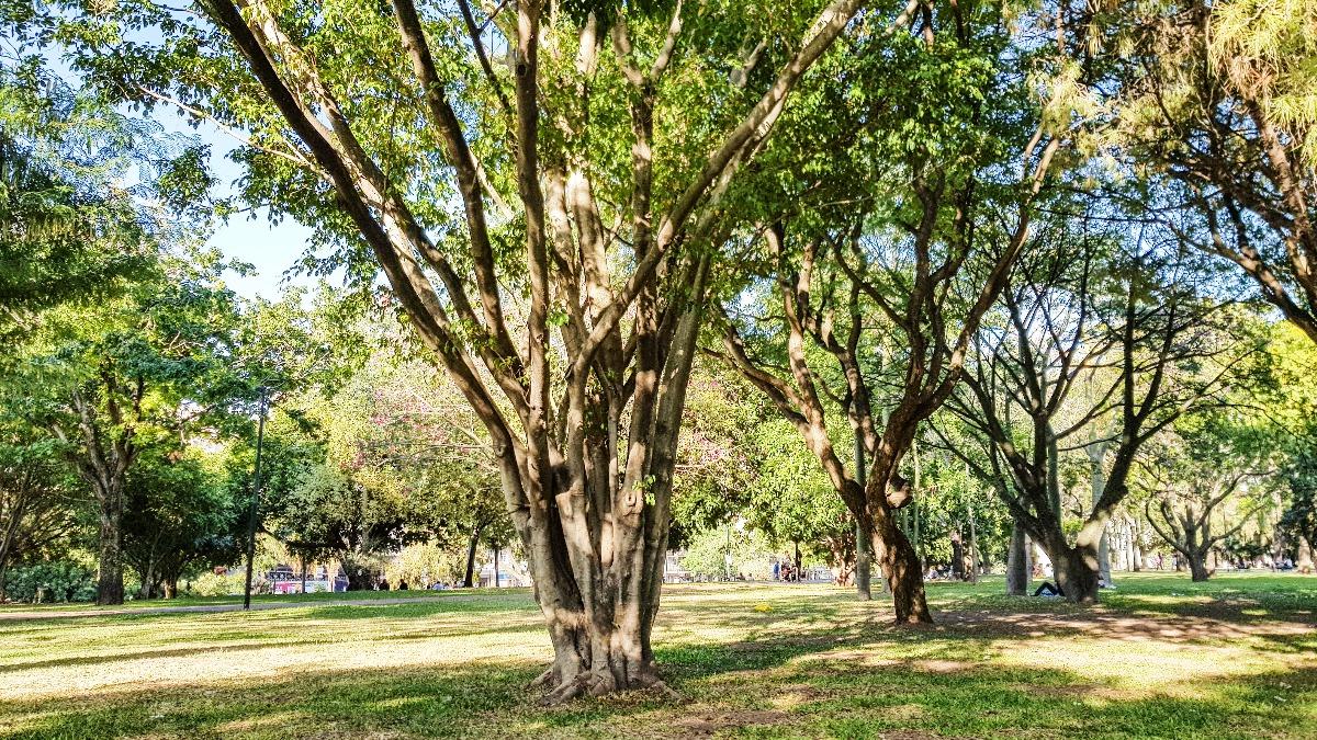Buenos Aires botanische tuin