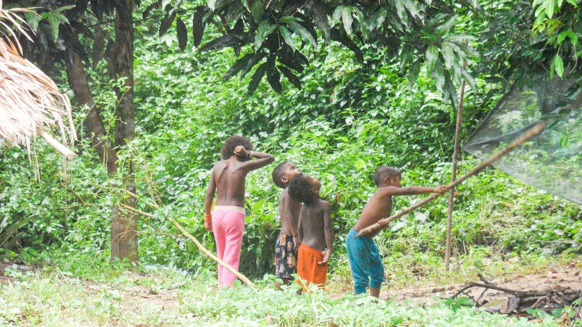 Inheems bevolking Orang Asli