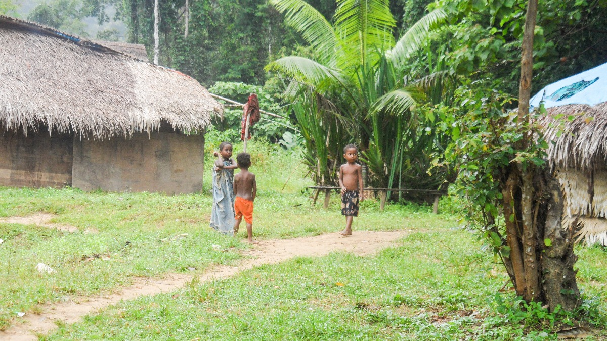 Inheemse bevolking Orang Asli