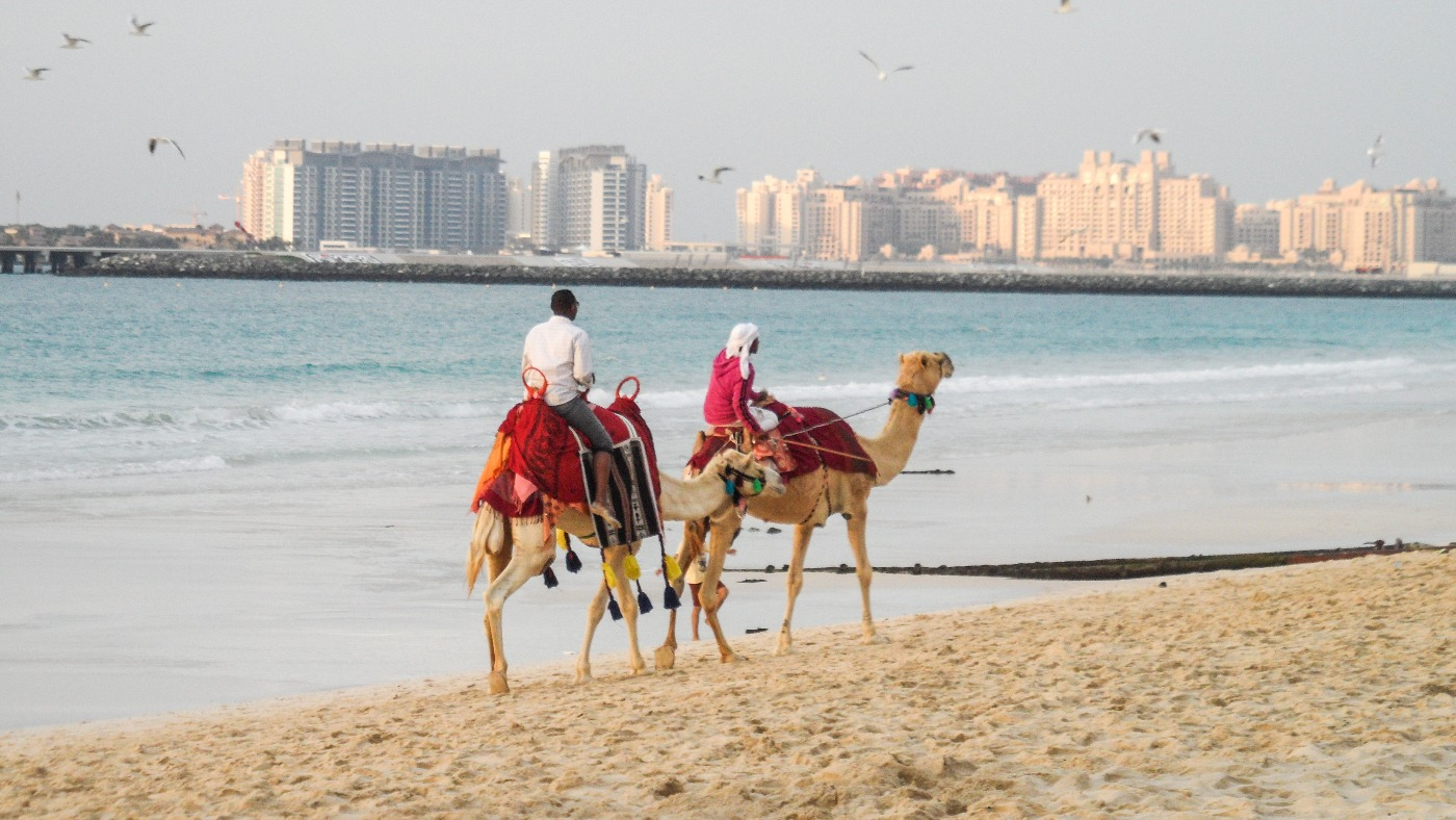 Bezienswaardigheden Dubai kameel
