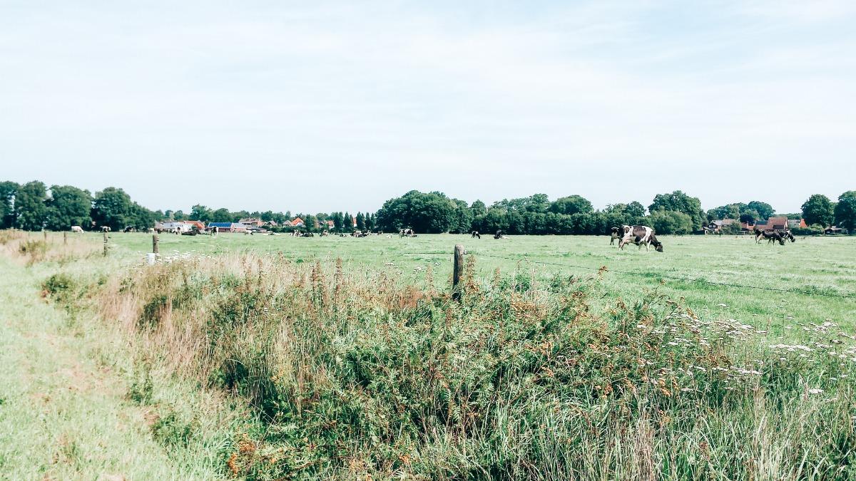 Twente augustus 2017
